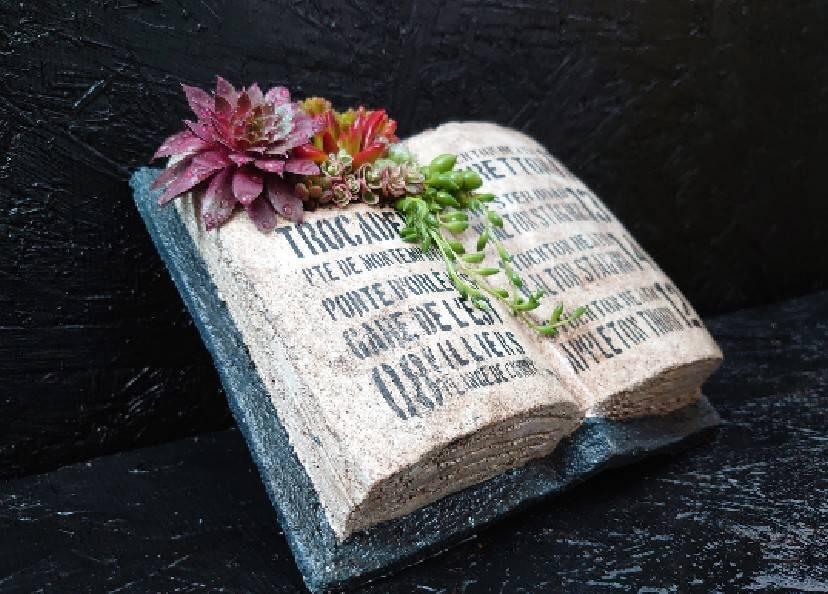 植物とふれ合おう イメージ